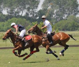 Polo Day at Puesto Viejo