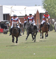 Polo Day Tournaments